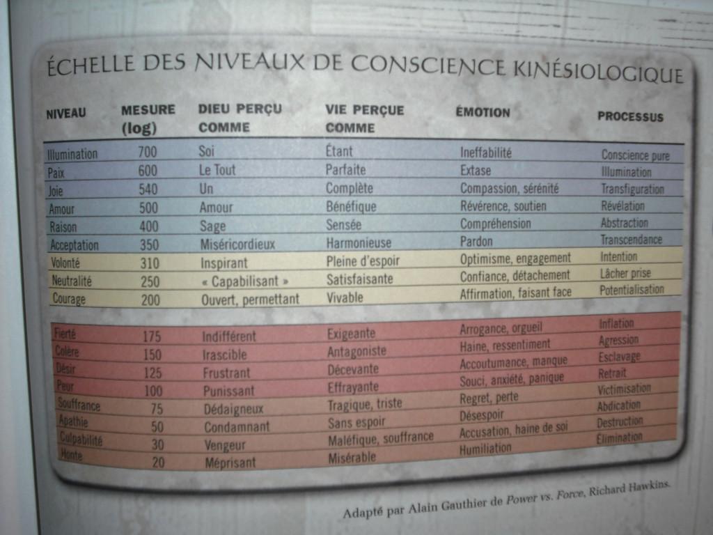 Echelle des niveaux de conscience kinésiologique dans ANNEXES kinésiologie-photo-11-1024x768