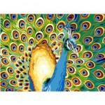 L'intuition est un mode de connaissance dans MEDITATIONS du JEU du TAO 7-150x150
