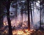 Réponse 7 du Monde du Feu du Tao dans Dans le Monde du Feu feu