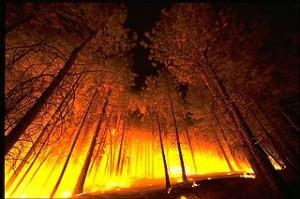 Réponse 3 du Monde du Feu du Tao dans Dans le Monde du Feu feu6-300x199