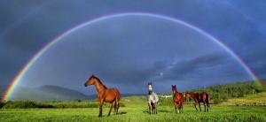La fin du Voyage dans QUESTIONS du JEU du TAO arcenciel-chevaux-300x138