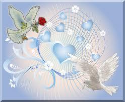 Les bienfaits de la Lumière dans TAO et le Maître colombe