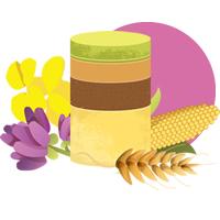 Les étapes de la nutrition dans MEDITATIONS du JEU du TAO nutrition