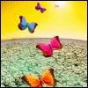 Bienvenue sur Terre dans Le Monde de la TERRE papillon-gifs-animes-0619454