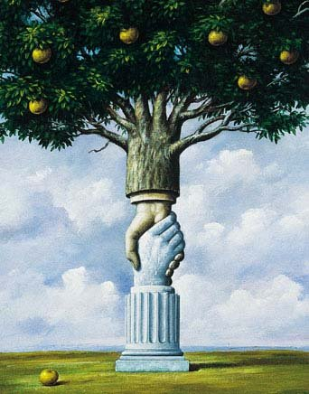 Jeu tao de francesca tao des arbres for Architecture symbolique