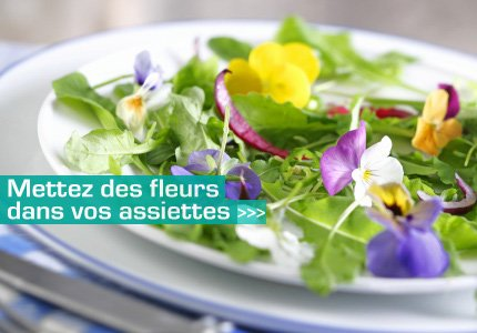 dossier_vegetal