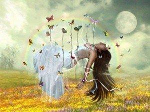 papillon-joie-abaondance