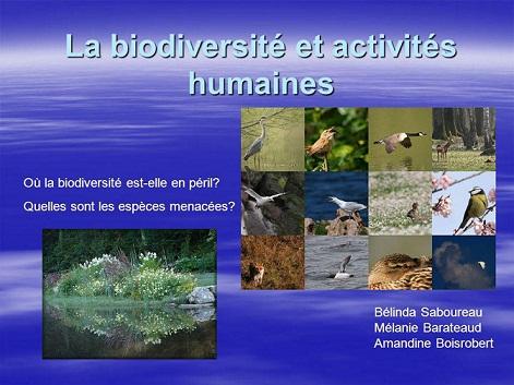biodiversité en péril